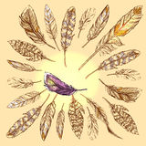 Feathers boho style Royalty Free Stock Photography