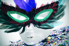 Feathers carnival mask Royalty Free Stock Image