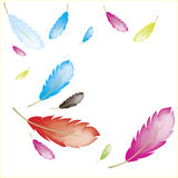 Feathers colorfull. Colorfull feathers background blue red white purple Stock Images