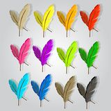 12 feathers in 12 different colors stock illustration