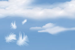 Feathers Floating Into Cloudy Sky Stock Photos