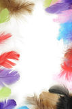 Feathers frame. Colorful feathers forming a frame Royalty Free Stock Photos