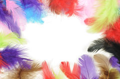 Feathers frame. On white background Royalty Free Stock Images