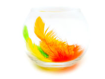 Feathers in the glass Royalty Free Stock Images
