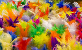 Feathers Jianzi Stock Images