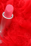Feathers and  lipstick Stock Images