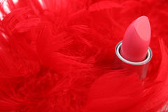 Feathers and  lipstick Royalty Free Stock Photos