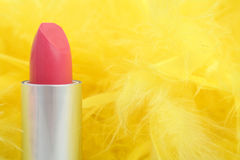Feathers and  lipstick Stock Photos