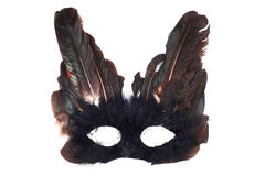 Feathers mask Stock Photography