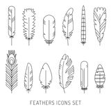 Feathers outline gray icons vector set. Minimalistic design. Royalty Free Stock Images