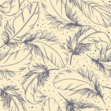 Feathers pattern Stock Image