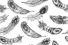 Feathers, pattern Royalty Free Stock Images