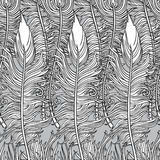 Feathers pattern. Set of three hand-drawn  feathers Stock Photos