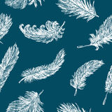 Feathers pattern Royalty Free Stock Photos