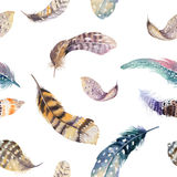 Feathers repeating pattern. Watercolor background with seamless Royalty Free Stock Photography