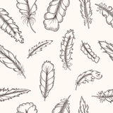 Feathers seamless pattern. Hand drawn vintage Stock Images