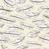 Feathers seamless pattern Stock Image