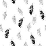 Feathers seamless pattern in zentangle style. Stock Photos
