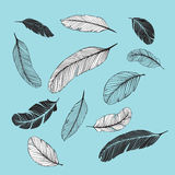 Feathers Set. Set of different feathers. Included black, white and transparent version stock illustration