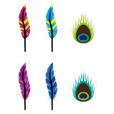 Feathers. A set of feather icons Stock Images
