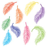 Feathers Set Stock Photos