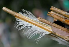 Feathers for the stabilization of the wooden hunting arrow and b. Feathers for the stabilization of the old wooden hunting arrow and bird feathers Stock Photos