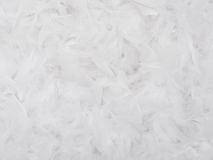 Feathers Texture. White feathers texture for background Royalty Free Stock Photo