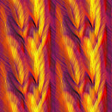 Feathers Texture Royalty Free Stock Photos