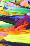 Feathers texture. Beautiful colored vibrant bird feather photo as background. Colorful feather pattern. Stock Photography