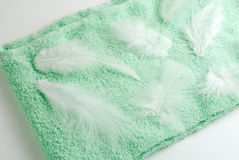 Feathers on the towel. White feathers on the pastel green towel Royalty Free Stock Photo