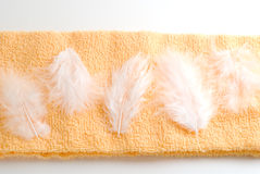 Feathers on the towel. White feathers lined up on the pastel orange towel Royalty Free Stock Photo