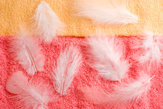 Feathers and towels texture Royalty Free Stock Photo
