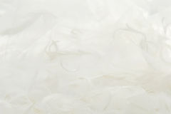 Feathers and white tulle fabric background. Abstract artistic composition with feathers and  transparent material feathers Stock Photo