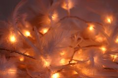 Feathery christmas lights. Unique christmas lights: holiday decoration with white feathers Stock Photography