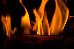 Feathery Flames. Close up of feathery, orange flames in a fireplace. Long exposure image so the flames look soft Royalty Free Stock Images