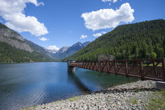 Feature at Lake MacDonald. Lake MacDonald near St. Ignatius Montana and Ninepipes refuge in Montana Royalty Free Stock Photography