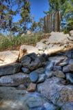 feature liggandevattenarbete Arkivfoto