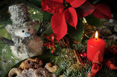 Free Feature Photo Christmas Royalty Free Stock Images - 19829299