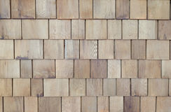 Feature solid timber plank wall. In light wood Stock Image