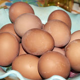 Featured boiled eggs produced by hens raised Stock Photos