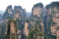 Featured mountain in Zhangjiajie, China. Steep and slim mountain and rocks, with attached green plant, the featured physiognomy locate in zhangjiajie, hunan Royalty Free Stock Photos