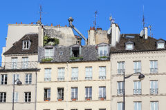 Features of the French housing. This is typical roof of Parisian houses with chimneys, mansards, windows, banisters and plant Stock Photo