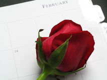 Feb 14th Stock Photos