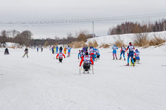 11 Feb 2017 Art-Veretevo Estate annual ski race Nikolov Perevoz 2017 Russialoppet ski marathon. Paralympic race. Royalty Free Stock Photography