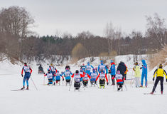 11 Feb 2017 Art-Veretevo Estate annual ski race Nikolov Perevoz 2017 Russialoppet ski marathon. Paralympic race. Royalty Free Stock Photo