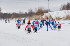 11 Feb 2017 Art-Veretevo Estate annual ski race Nikolov Perevoz 2017 Russialoppet ski marathon. Paralympic race. Royalty Free Stock Photos