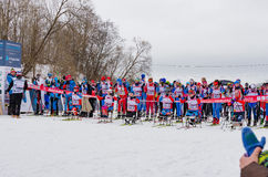 11 Feb 2017 Art-Veretevo Estate annual ski race Nikolov Perevoz 2017 Russialoppet ski marathon. Paralympic race. Stock Photos