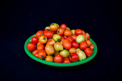 22, Feb 2017 Dalat- pomidorowe owoc na zielonym plastikowym koszu, czarny tło Zdjęcia Royalty Free
