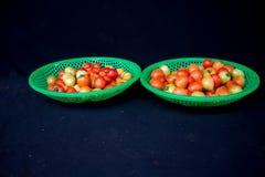 22, febbraio Il pomodoro 2017 di Dalat- fruttifica sul canestro di plastica verde, fondo nero Fotografia Stock