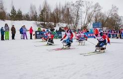 11 febbraio 2017 maratona annuale 2017 dello sci di Nikolov Perevoz Russialoppet della corsa di sci della proprietà di arte-Veret Immagini Stock Libere da Diritti